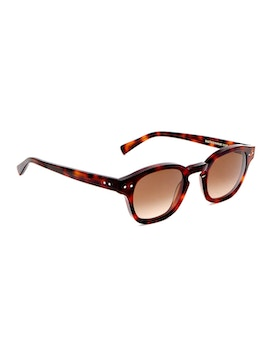 Johnny Dark Havana - Gradient Brown Lenses