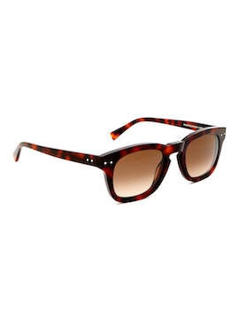 Clark Dark Havana - Gradient Brown Lenses